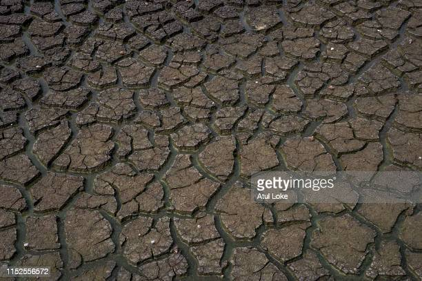 Dry bed of Chembarambakkam lake on June 28 2019 in the outskirts of Chennai India All the four major reservoirs supplying water to Chennai has dried...