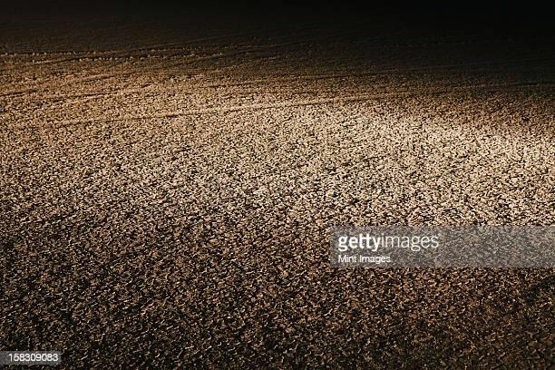 Dry cracked desert surface, at night in Black Rock Desert in Nevada, USA