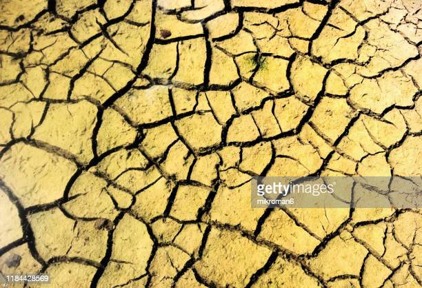 dry cracked ground during drought - geology stock pictures, royalty-free photos & images