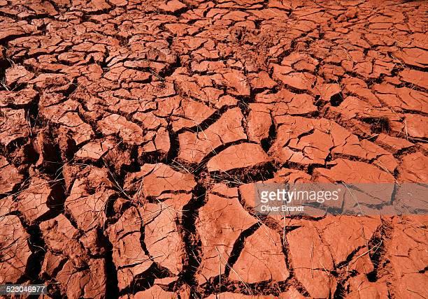 Dry cracks in red clay, drought, Puntagorda, Camino de la Rosa, La Palma, La Isla Verde, La Isla Bonita, Canary Islands, Islas Canarias, Spain, Europe