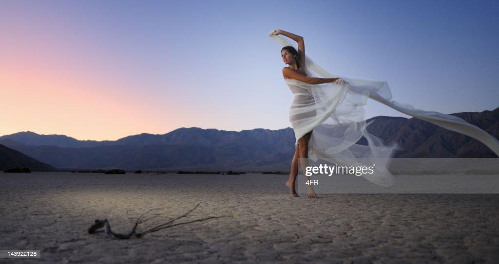 Dry Desert Dancing : Stock Photo