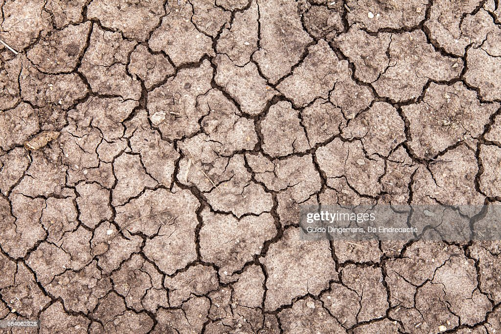 Dry earth in southern Malawi, during the 2016 drought and food crisis : Stock Photo