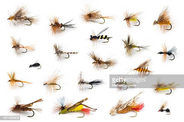dry flies - fishing hook stock pictures, royalty-free photos & images