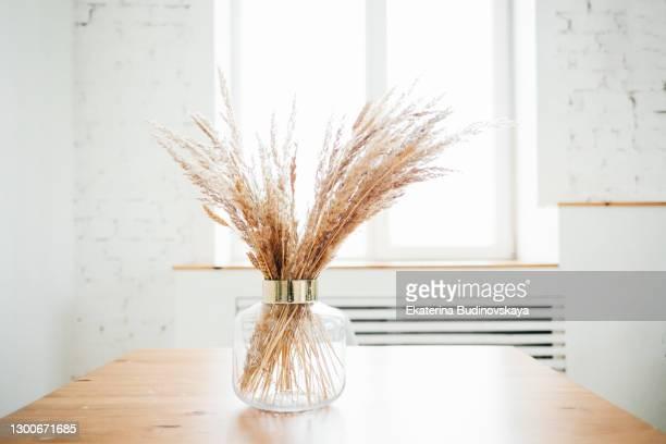 dry grass in glass vase decor - wohngebäude innenansicht stock-fotos und bilder