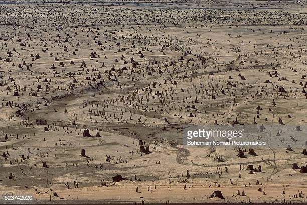 dry lake bed - lake bed stock photos and pictures