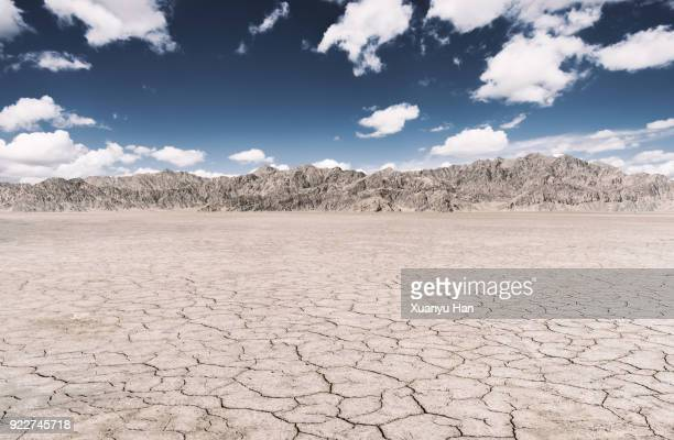 dry land - lake bed stock photos and pictures