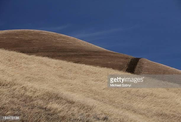 Dry mountain hill, California, USA