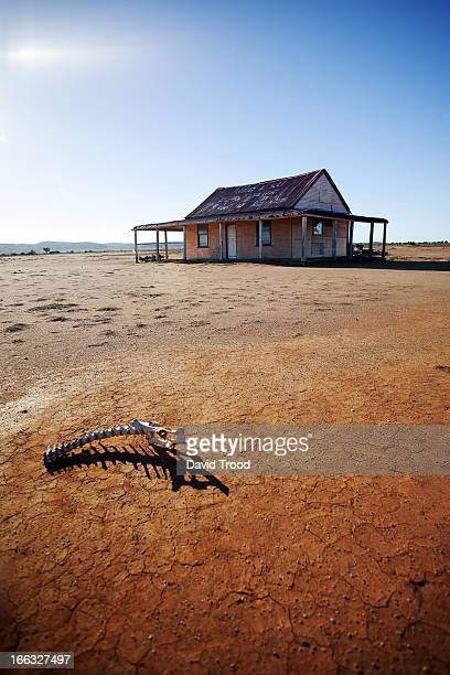 dry outback shed - drought stock pictures, royalty-free photos & images