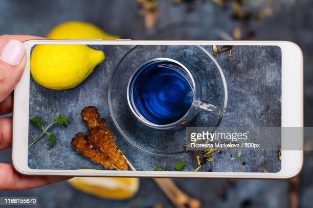 dry pea flowers - clitoria bildbanksfoton och bilder