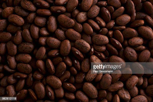 dry pinto beans - pinto bean stock photos and pictures