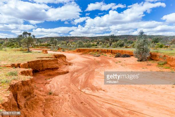 dry river bed - drought stock pictures, royalty-free photos & images