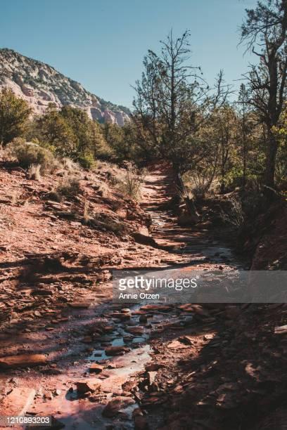 dry riverbed in sedona arizona - flussbett stock-fotos und bilder