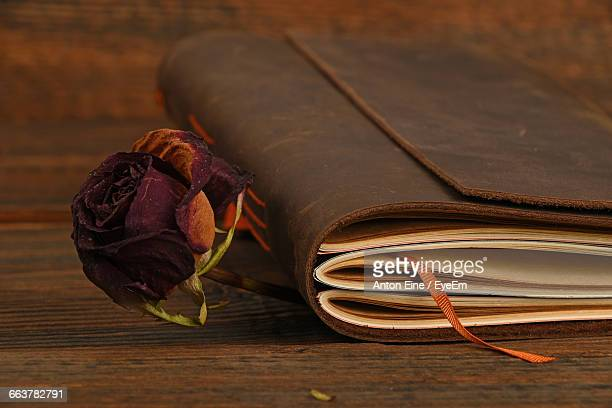 Dry Roses In Book On Table