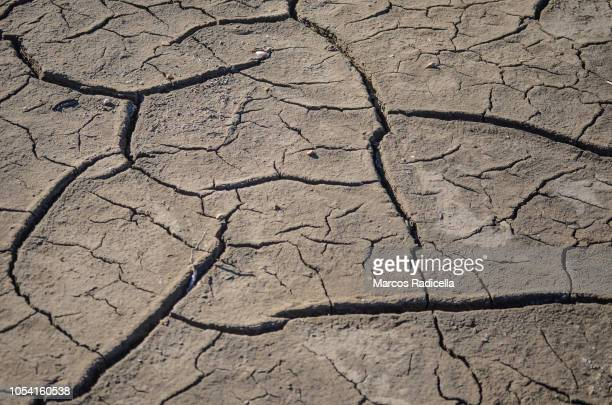dry soil - radicella stock pictures, royalty-free photos & images