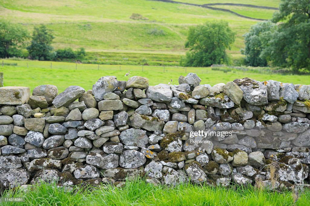 Dry Stone Wall in Yorkshire Dales : Stock Photo