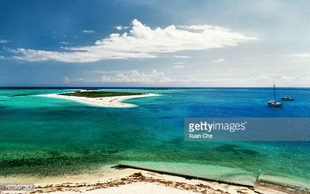dry tortugas national park - key west stock photos and pictures