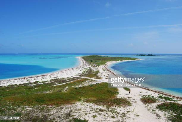 dry tortugas - dry tortugas stock pictures, royalty-free photos & images