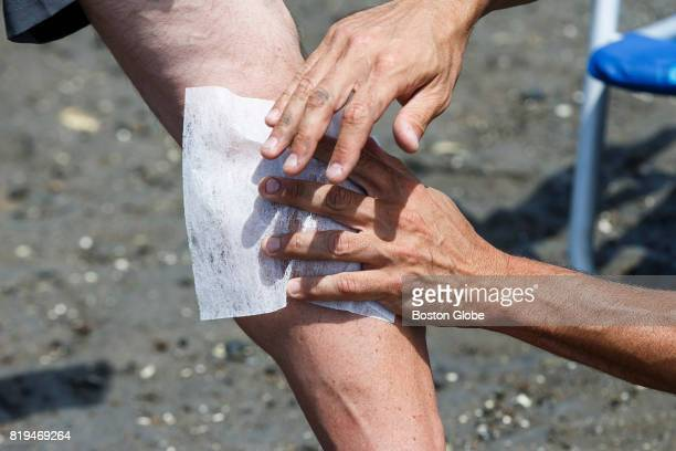 Dryer sheet is rubbed onto a leg in an attempt to determine if local remedies such as dryer sheets prevent bites by greenhead flies in Essex, MA on...