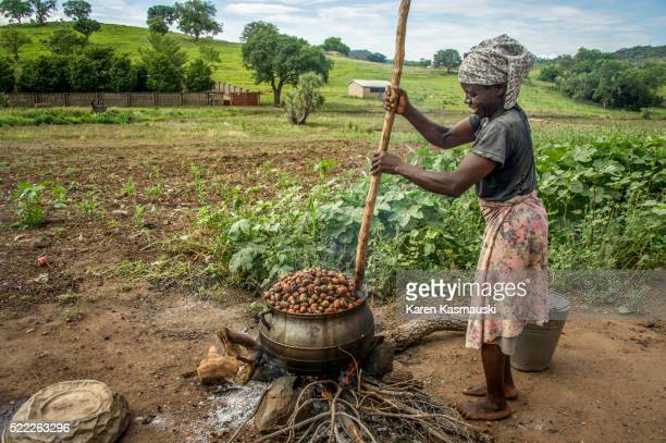 Drying Shea Nuts in Ghana
