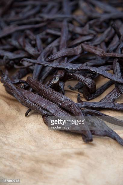 Trocknen tahitischer Vanille-Bohnen
