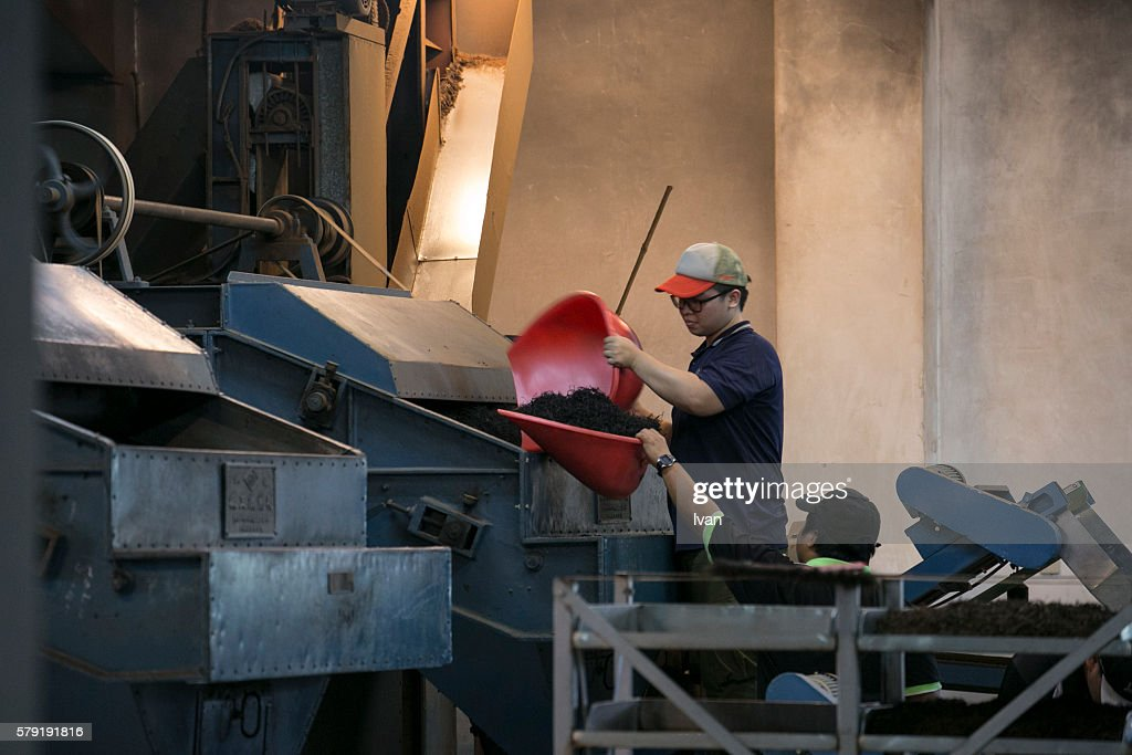 Drying Tea Leaves Processing Factory in Nantou, Taiwan : Stock Photo