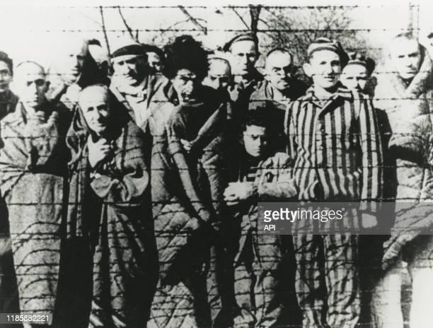Détenus du camp de concentration d'Auschwitz lors de l'arrivée de l'armée soviétique, en 1944, Pologne.