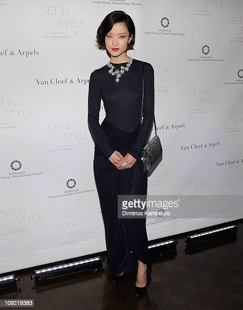 """Du Juan attends the """"Set in Style: The Jewelry of Van Cleef & Arpels"""" opening gala at Cooper-Hewitt, National Design Museum on February 16, 2011 in..."""