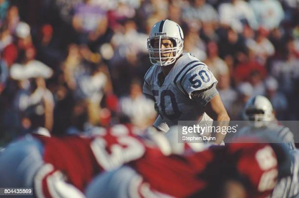 Duane Bickett Linebacker for the Indianapolis Colts during the National Football Conference East game against the Arizona Cardinals on 2 December...