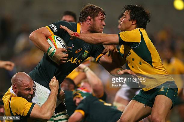 Duane Vermeulen of the Springboks gets tackled by Scott Fardy and Nick Phipps of the Wallabies during The Rugby Championship match between the...