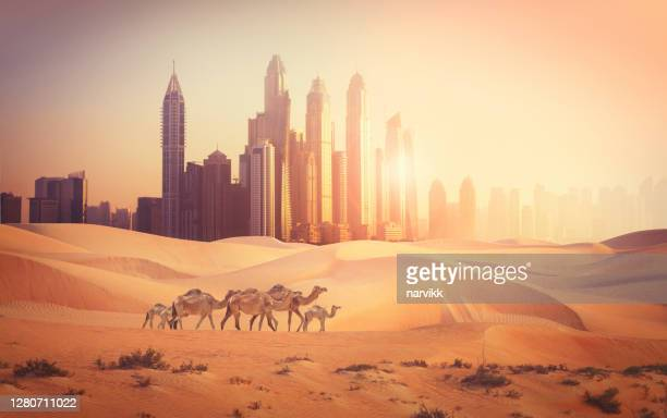 dubai city in the desert - desert stock pictures, royalty-free photos & images