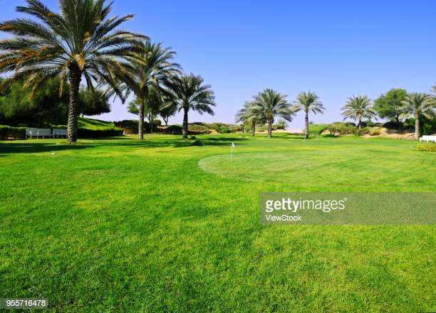 dubai desert hotel - gulf countries stock pictures, royalty-free photos & images