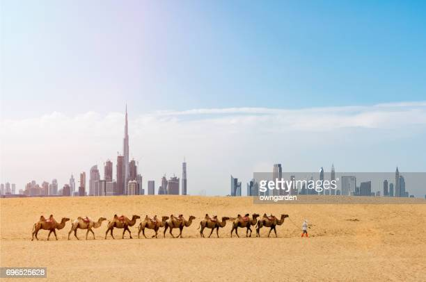 dubai scenery - skyline stock pictures, royalty-free photos & images