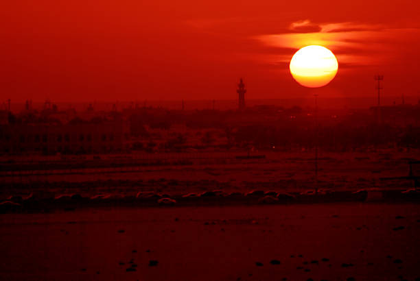 Dubai, sheikh, zayed, road, sunset, sunrise, mazaya