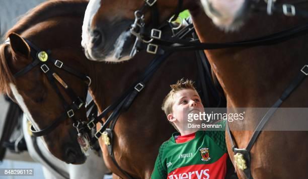 Dublin Ireland 17 September 2017 Mayo supporter Brían Cullinane aged 9 from Claremorris Co Mayo with the An Garda Síochána horses on Jones' Road...