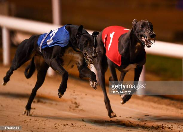 Dublin , Ireland - 21 September 2019; Blue East, right, races next to Clonbrien Prince, on its way to winning race nine, The Michael Fortune Memorial...