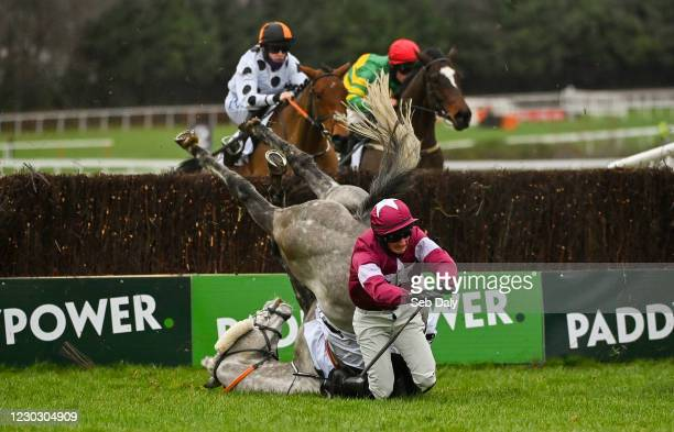 Dublin , Ireland - 26 December 2020; Jan Maat and jockey Hugh Morgan fall at the last during the Bet Through The Free Racing Post App Handicap...