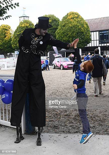 Dublin , Ireland - 29 October 2016; 8 year old Leinster supporter Ben Murphy ahead of the Guinness PRO12 Round 7 match between Leinster and Connacht...
