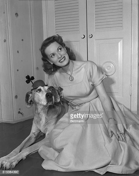 Dublin-born movie star Maureen O'Hara must have St. Patrick's Day on her mind as she fits her dog 'Trip' with a bowler and shamrock to match. She'll...