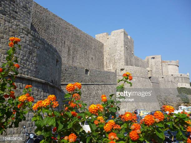 dubrovnik, croatia - bluefootage stock pictures, royalty-free photos & images