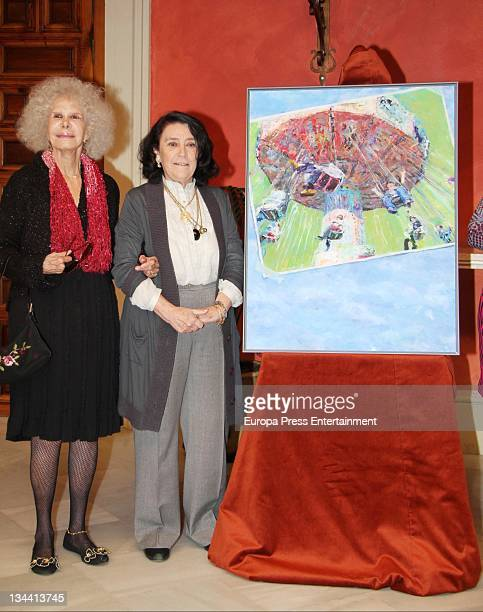 Duchess of Alba Cayetana FitzJames Stuart attends the presentation of 'Nuevo Futuro' poster at Cajasol headquarters on November 30 2011 in Seville...