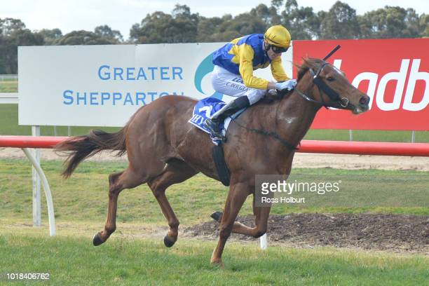 Atunnah Courage after winning the Admoor Plumbing 0 58 Handicap at Tatura Racecourse on August 18 2018 in Tatura Australia