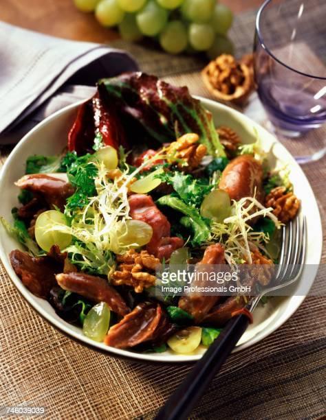 Duck and walnut salad