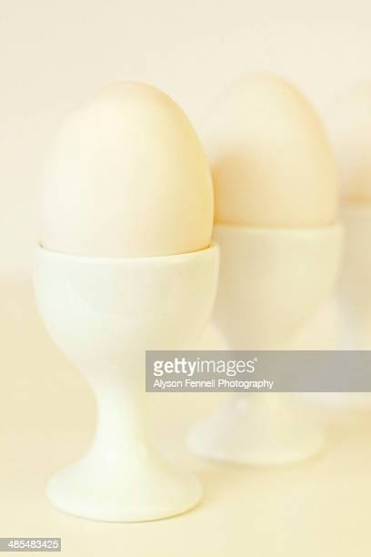 duck eggs in egg cups - alyson fennell stock pictures, royalty-free photos & images