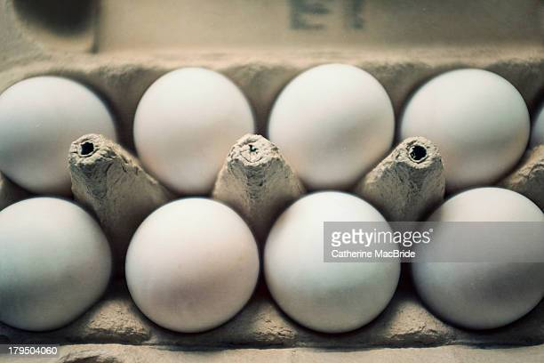duck eggs - catherine macbride stock pictures, royalty-free photos & images