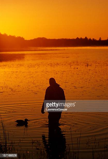 duck hunter and decoy - wader bird stock photos and pictures