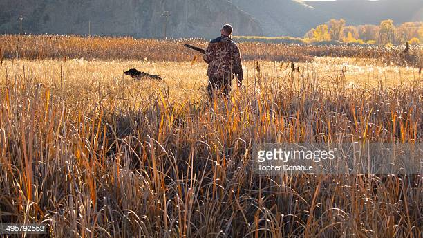 A duck hunter and his dog look for a fallen duck in tall grass.