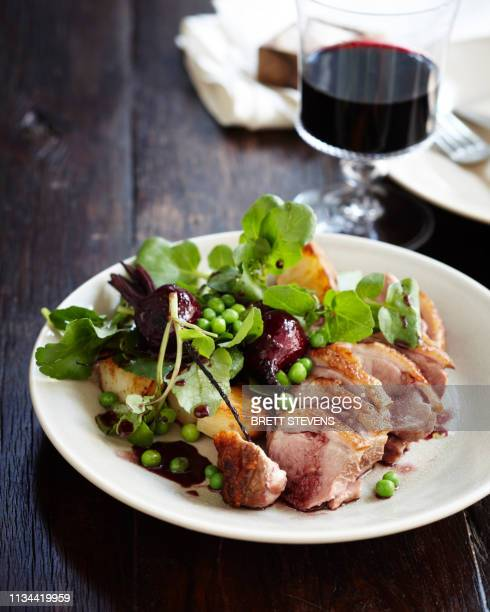 duck salad with pinot jus and vegetables - pinot noir grape stock photos and pictures