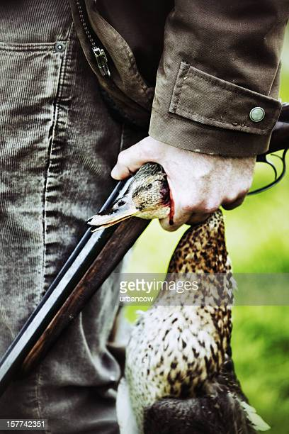 duck shoot - dead dog stock pictures, royalty-free photos & images