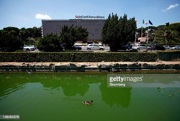 Duck swims a pond opposite the UniCredit SpA headquarters in Rome, Italy, on Tuesday, July 17, 2012. UniCredit SpA and Intesa Sanpaolo SpA were among...