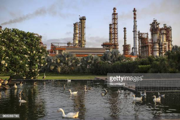 Ducks gather in a pond at the Vadinar Refinery complex operated by Nayare Energy Ltd formerly known as Essar Oil Ltd and now jointly owned by Rosneft...